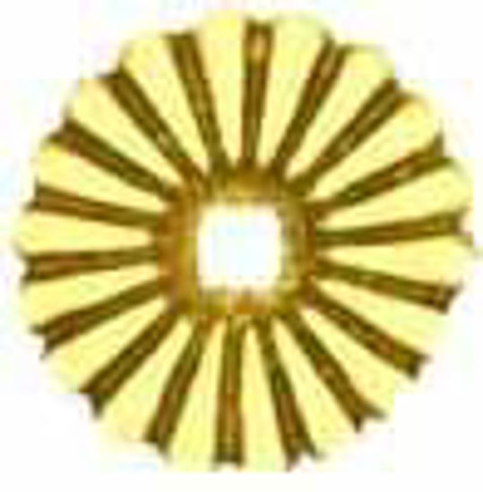 Picture of Backplate - Convex Reeded Petal